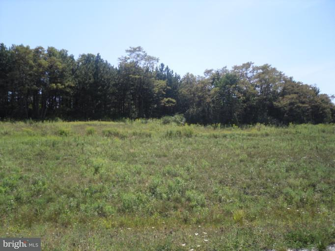 Additional photo for property listing at Lot 11 Whispering Pines Ln  Frostburg, Maryland 21532 United States