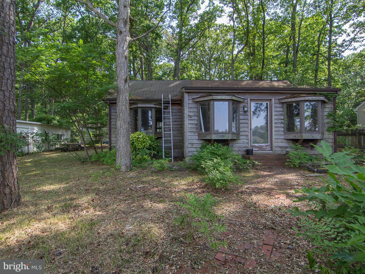 Additional photo for property listing at 24328 Oakwood Park Rd  St. Michaels, Maryland 21663 United States