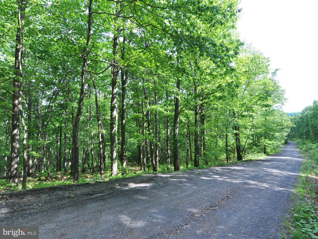 Land for Sale at 7-B Fall Run Rd Winchester, Virginia 22602 United States