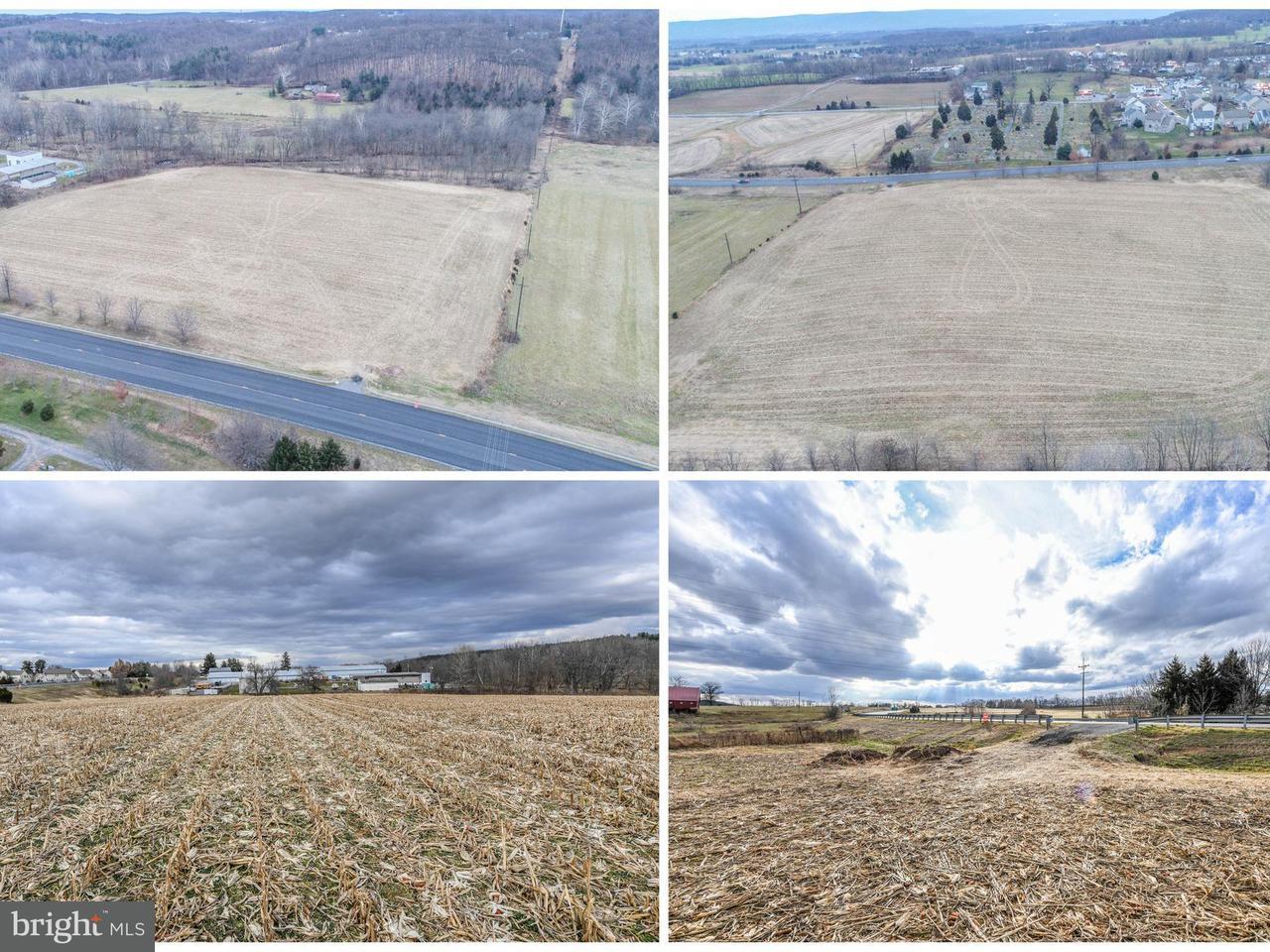 Land for Sale at Woodsboro Pike Woodsboro, Maryland 21798 United States