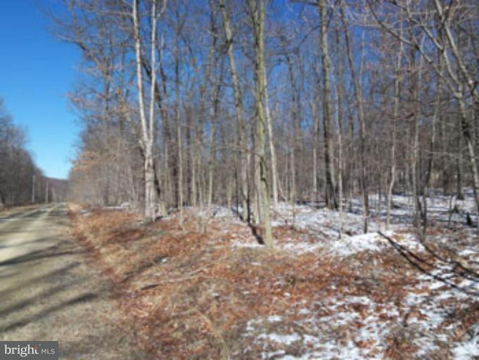 Land for Sale at 9 North Trevor Drive Great Cacapon, West Virginia 25422 United States