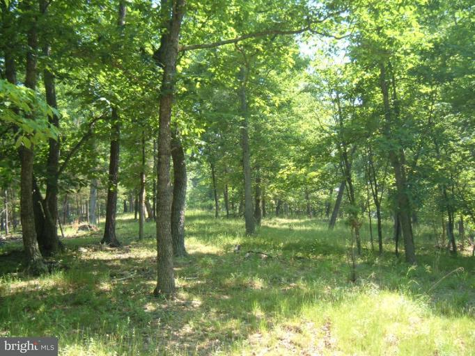 Land for Sale at Pinepointe Dr Keyser, West Virginia 26726 United States