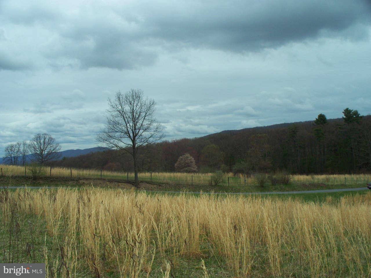 Land for Sale at 13100 Glendale Farm Rd Flintstone, Maryland 21530 United States
