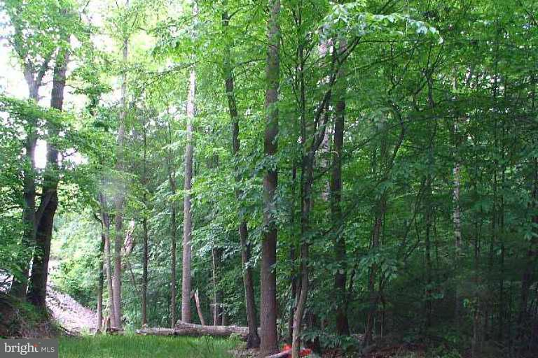 Land for Sale at 6401 Yates Ford Rd Manassas, Virginia 20111 United States