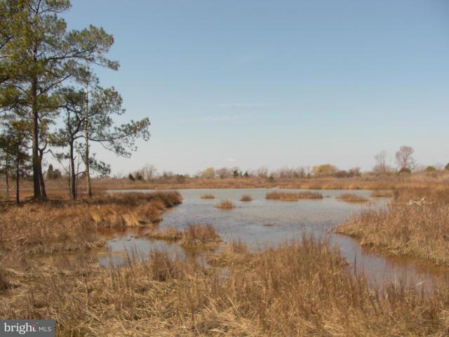 Additional photo for property listing at Hoopers Island Road S  Fishing Creek, Maryland 21634 United States