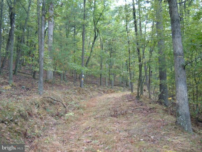 Land for Sale at Town Creek Rd SE Oldtown, Maryland 21555 United States