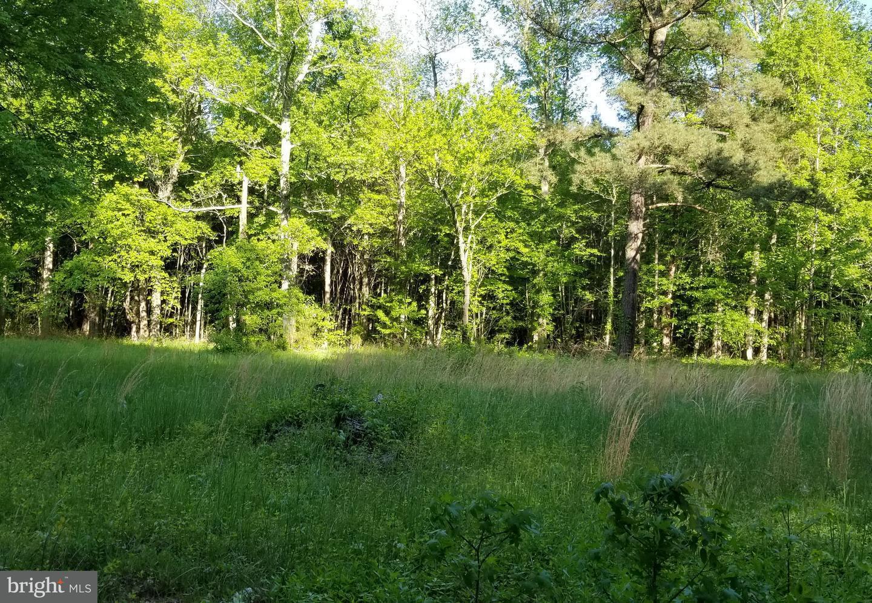 Land for Sale at 5325 Beaver Neck Village Rd Linkwood, Maryland 21835 United States