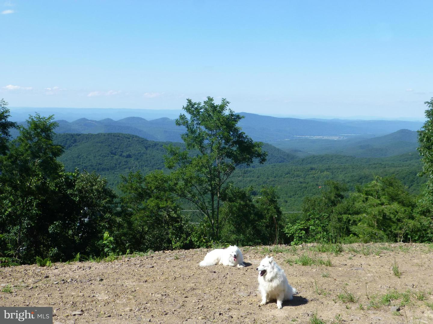 Land for Sale at 333 Nathaniel Mountain Rd Moorefield, West Virginia 26836 United States