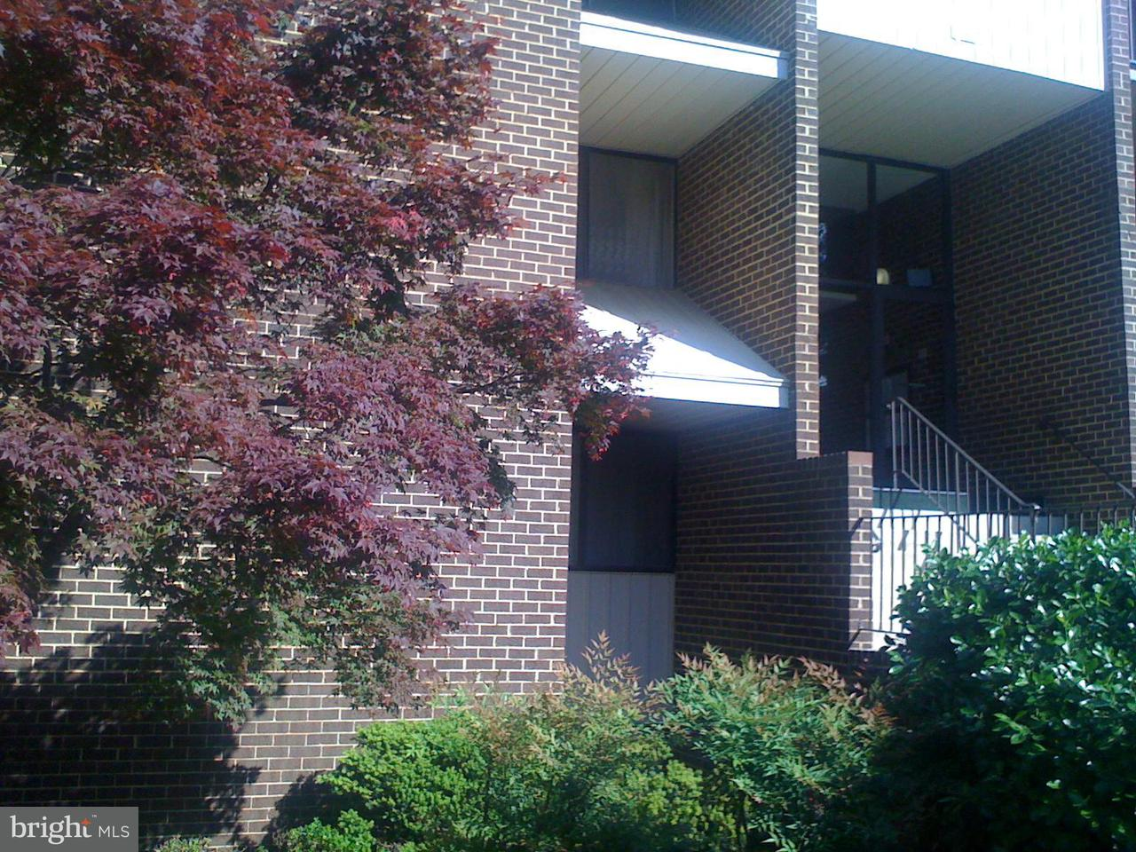 Condominium for Rent at 11242 Cherry Hill Rd #14 Beltsville, Maryland 20705 United States