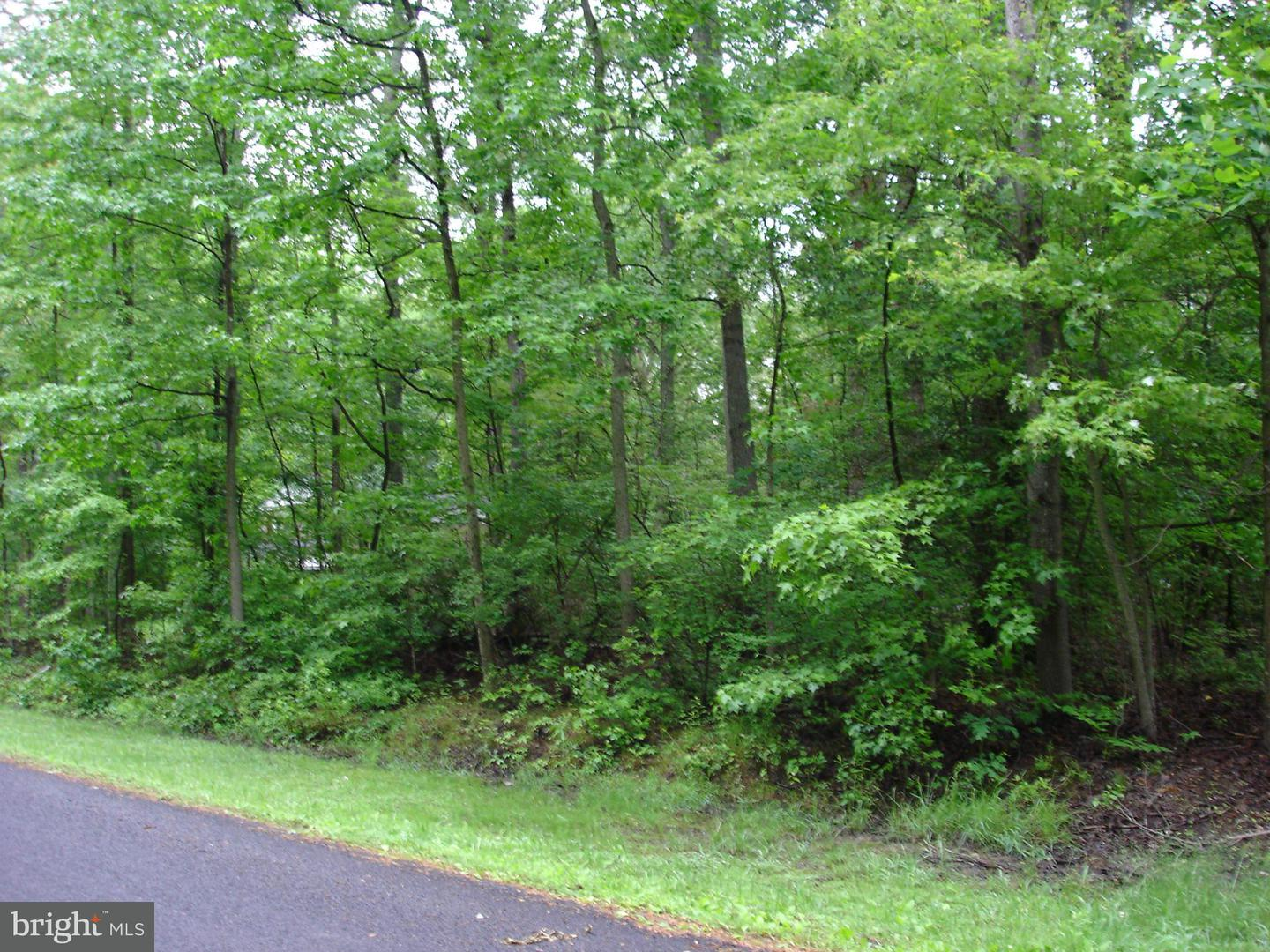 Land for Sale at 4170 Park Ave White Plains, Maryland 20695 United States