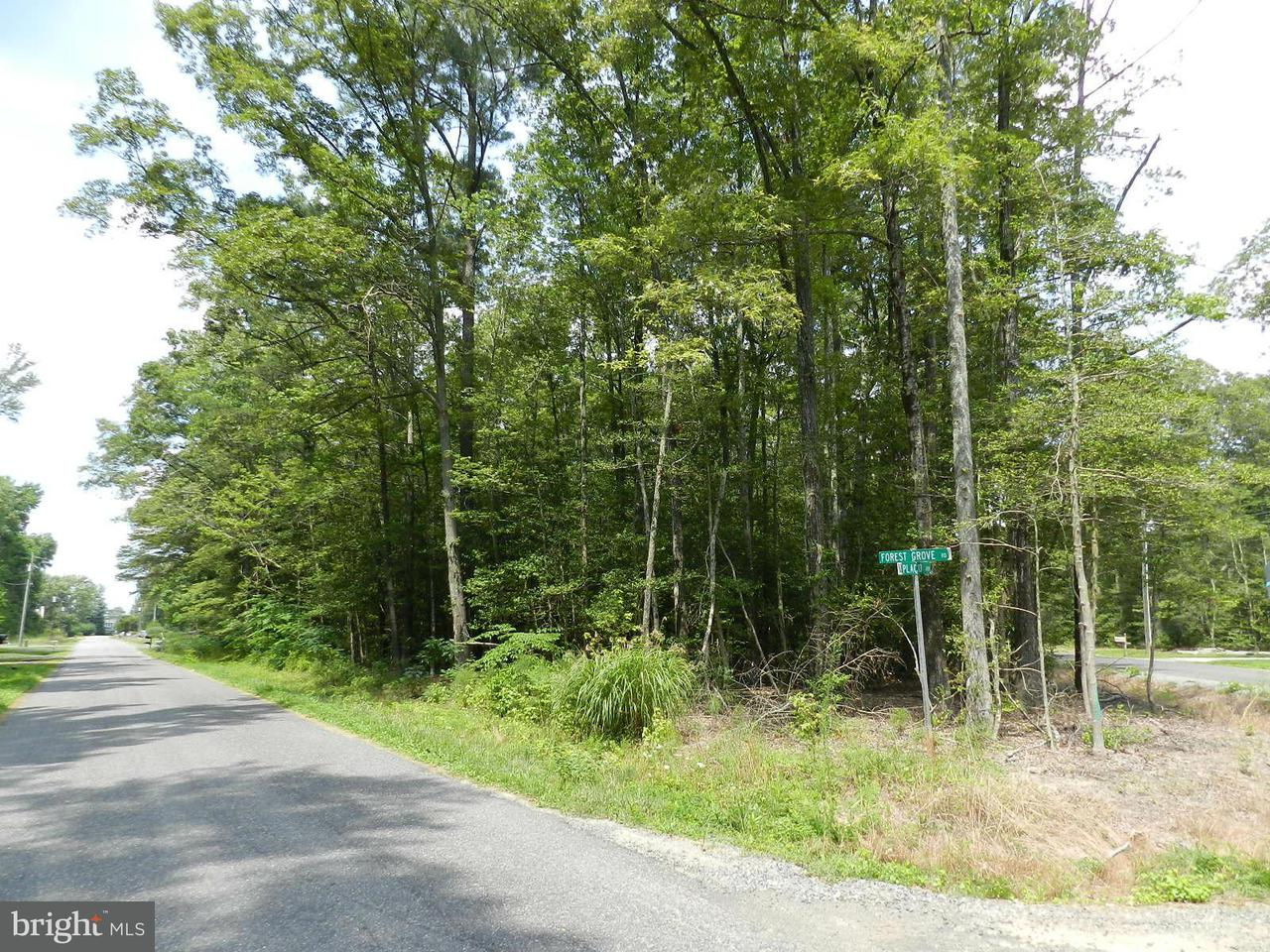 Land for Sale at Placid Point Colonial Beach, Virginia 22443 United States