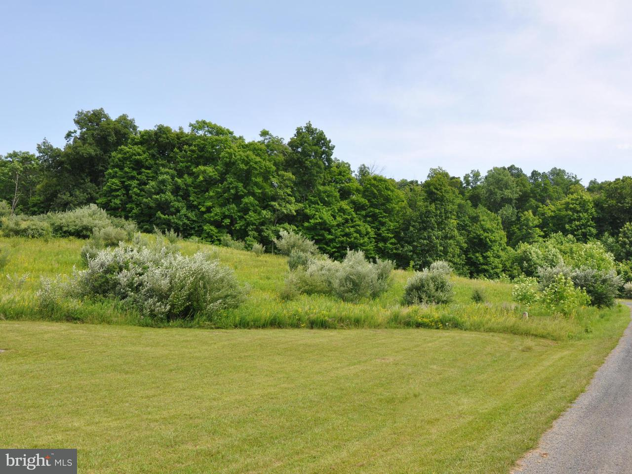 Additional photo for property listing at 5 Willa Cather Ln  Gore, Virginia 22637 United States