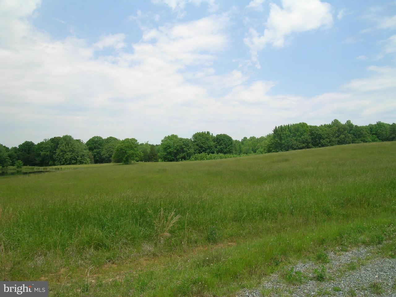 Additional photo for property listing at 5 Aeolian  Bumpass, Virginia 23024 United States