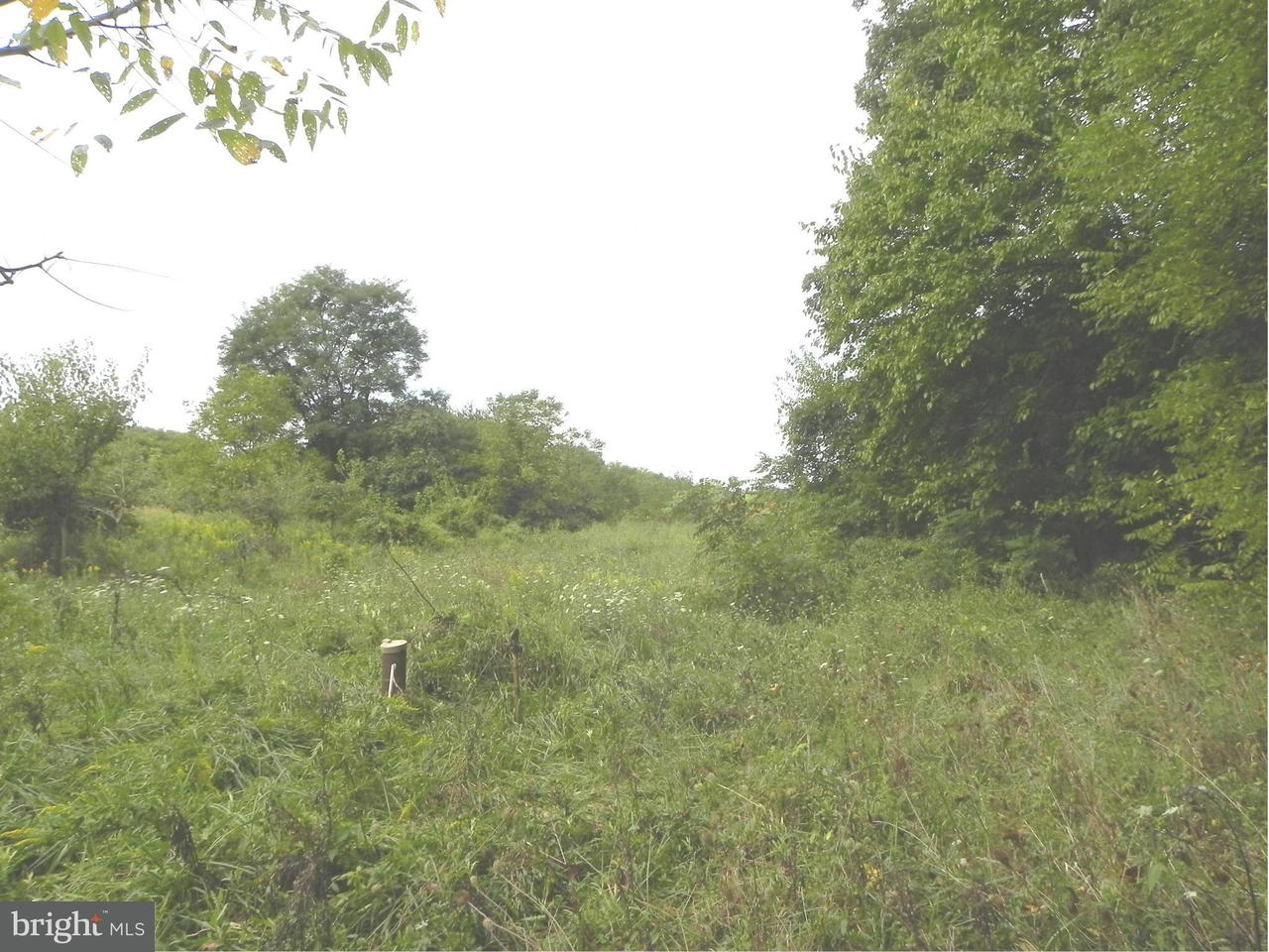 Land for Sale at 17410 Moore Road 17410 Moore Road Boyds, Maryland 20841 United States