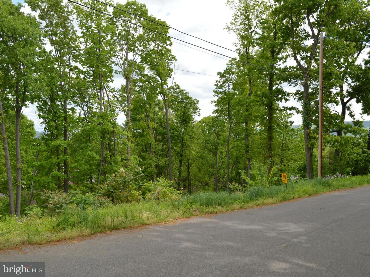 Land for Sale at 0 Carolyn St Wiley Ford, West Virginia 26767 United States