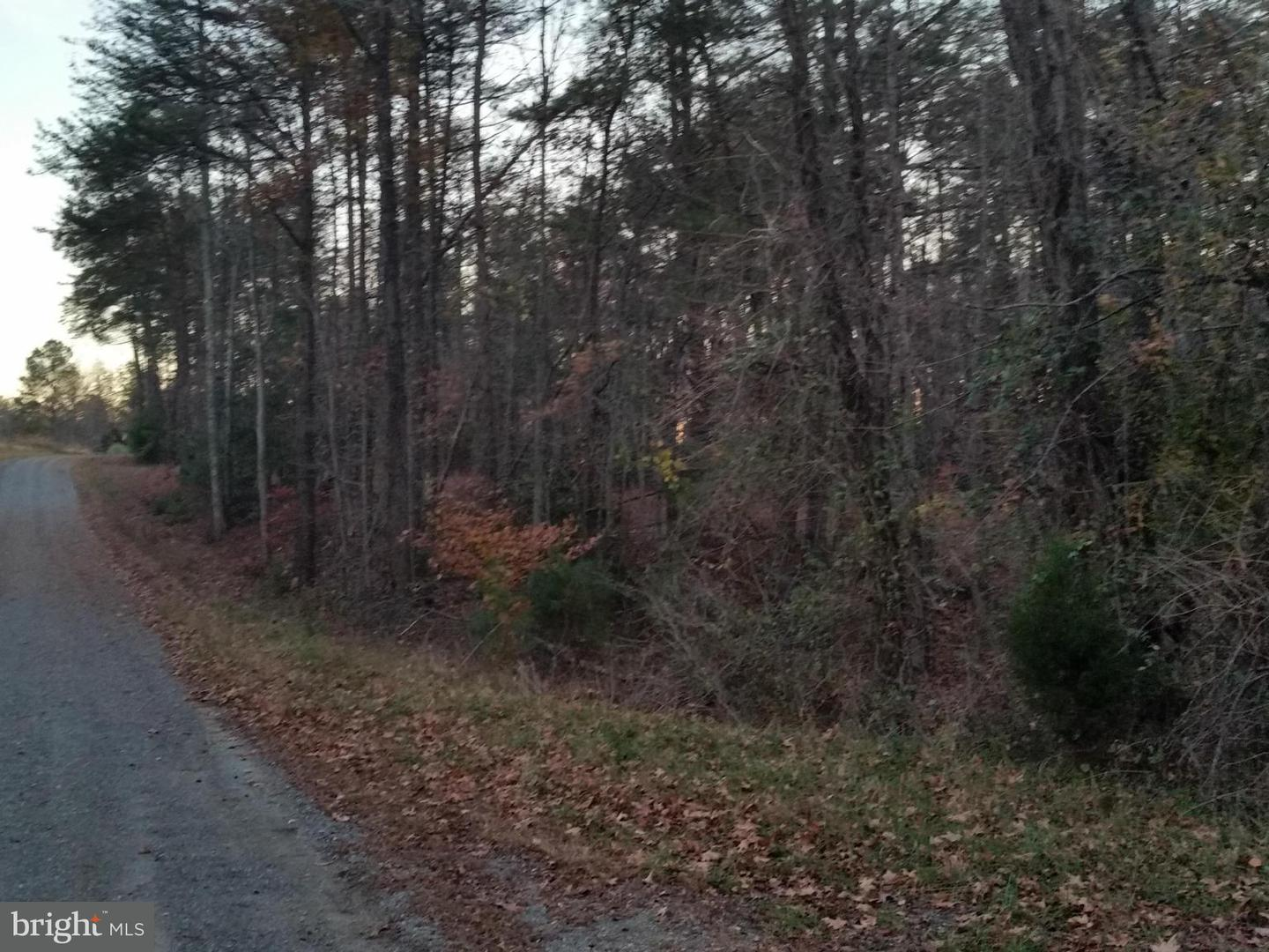 Additional photo for property listing at Weeks Rd  Montross, Virginia 22520 United States