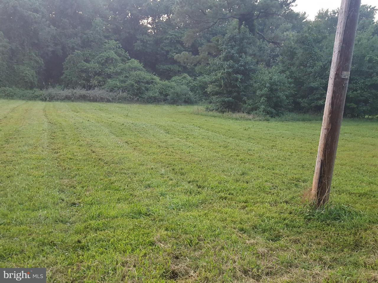 Land for Sale at 3120 Jesterville Rd Nanticoke, Maryland 21840 United States