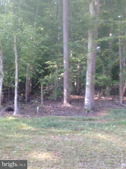 Additional photo for property listing at 4794 Bog Turtle Ct  Waldorf, Maryland 20601 United States