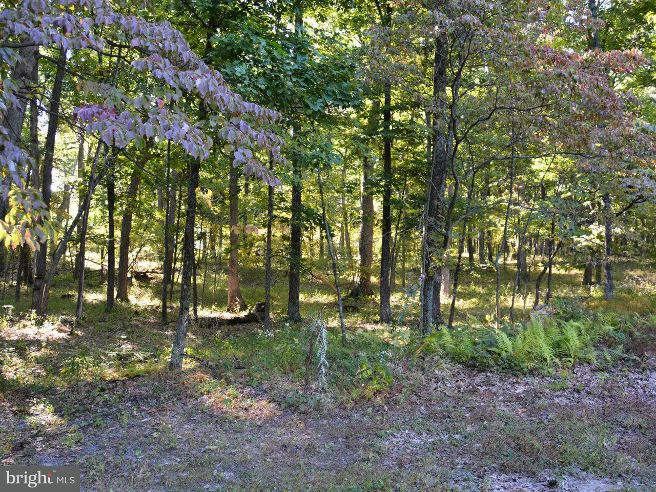 Additional photo for property listing at 1001 Ritter Dr  Capon Bridge, West Virginia 26711 United States