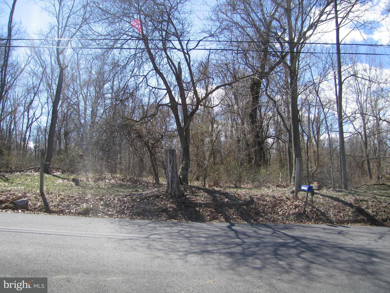 Land for Sale at 16303 Shaffer Rd Sharpsburg, Maryland 21782 United States