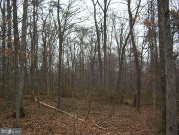 Additional photo for property listing at Hungaria Ave  Berkeley Springs, West Virginia 25411 United States