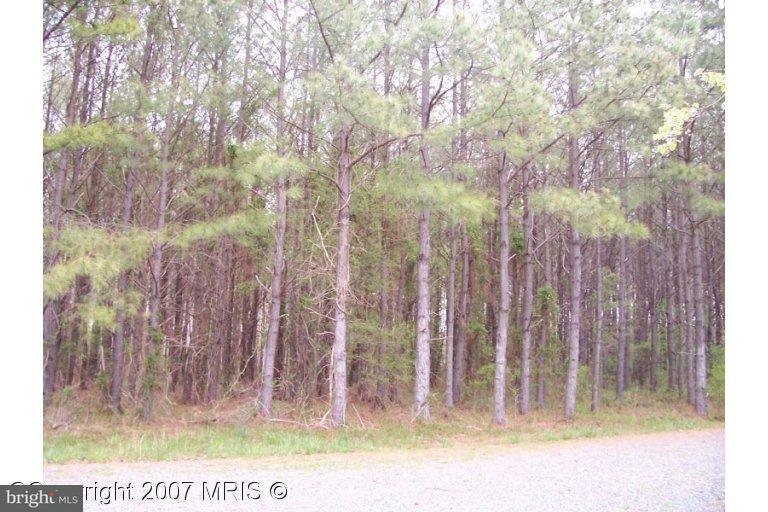 Photo of home for sale at Buck Rub Lot #1 Road, Trappe MD