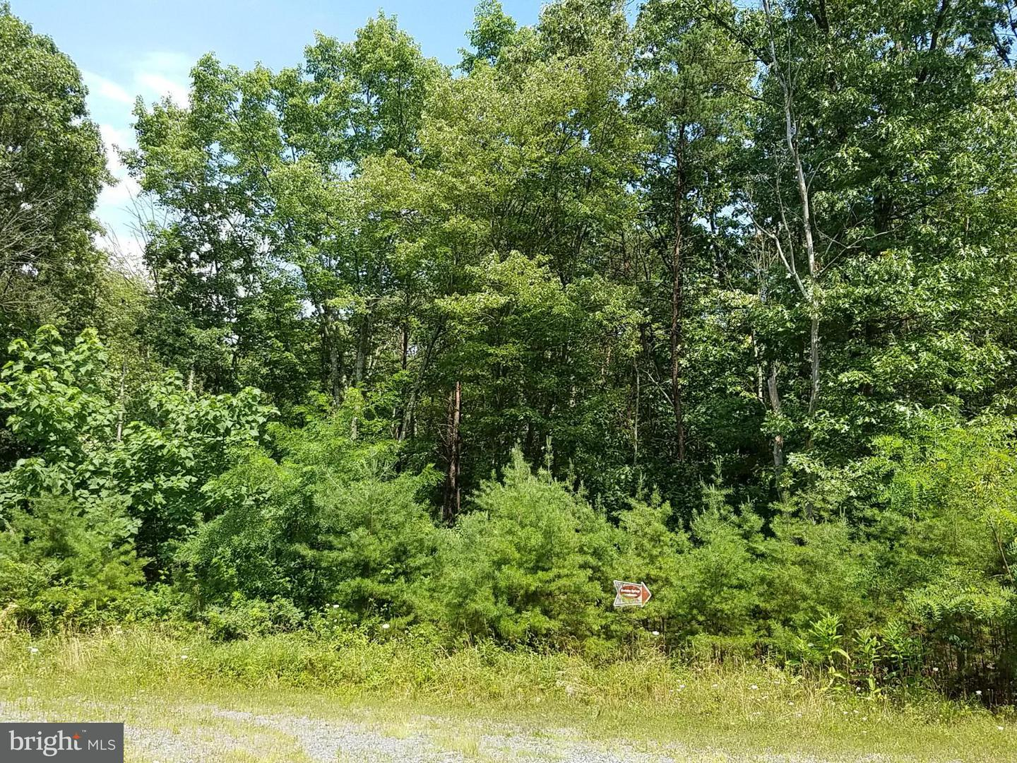 Additional photo for property listing at 9 Silage Ln  Berkeley Springs, West Virginia 25411 United States