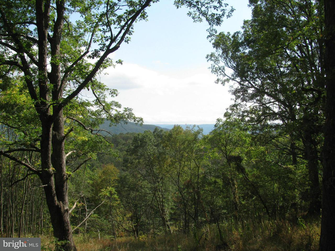 Land for Sale at Howard's Lick Mathias, West Virginia 26812 United States