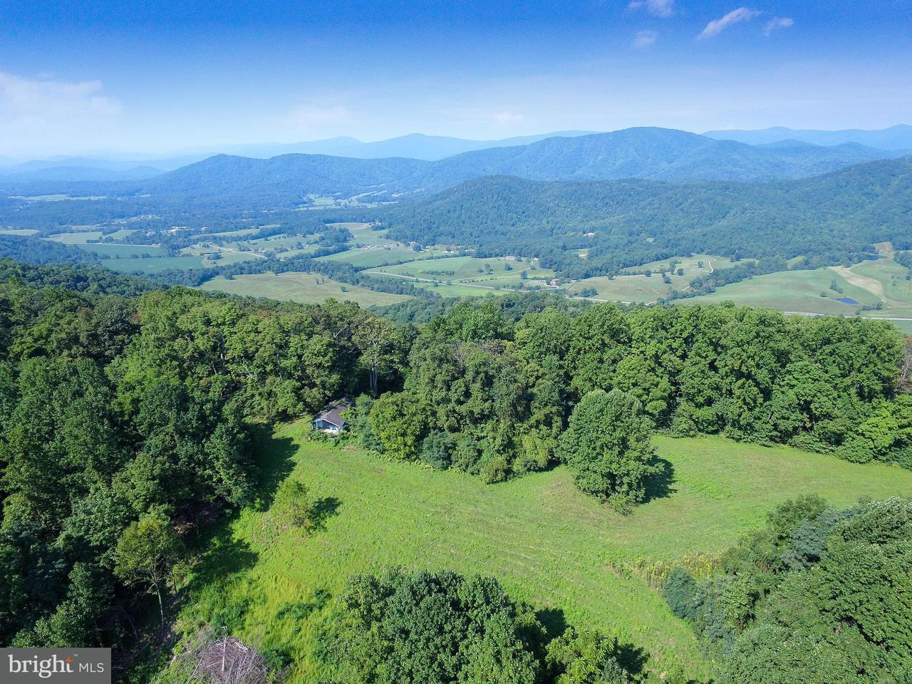 Photo of home for sale at 0 Ruth Hollow Fire Trail, Madison VA