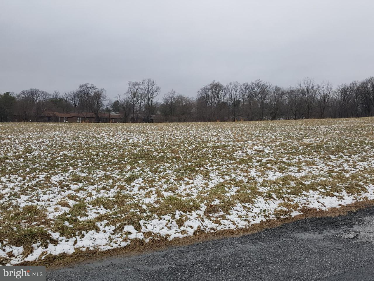 Land for Sale at 3410 Chapman Road 3410 Chapman Road Randallstown, Maryland 21133 United States