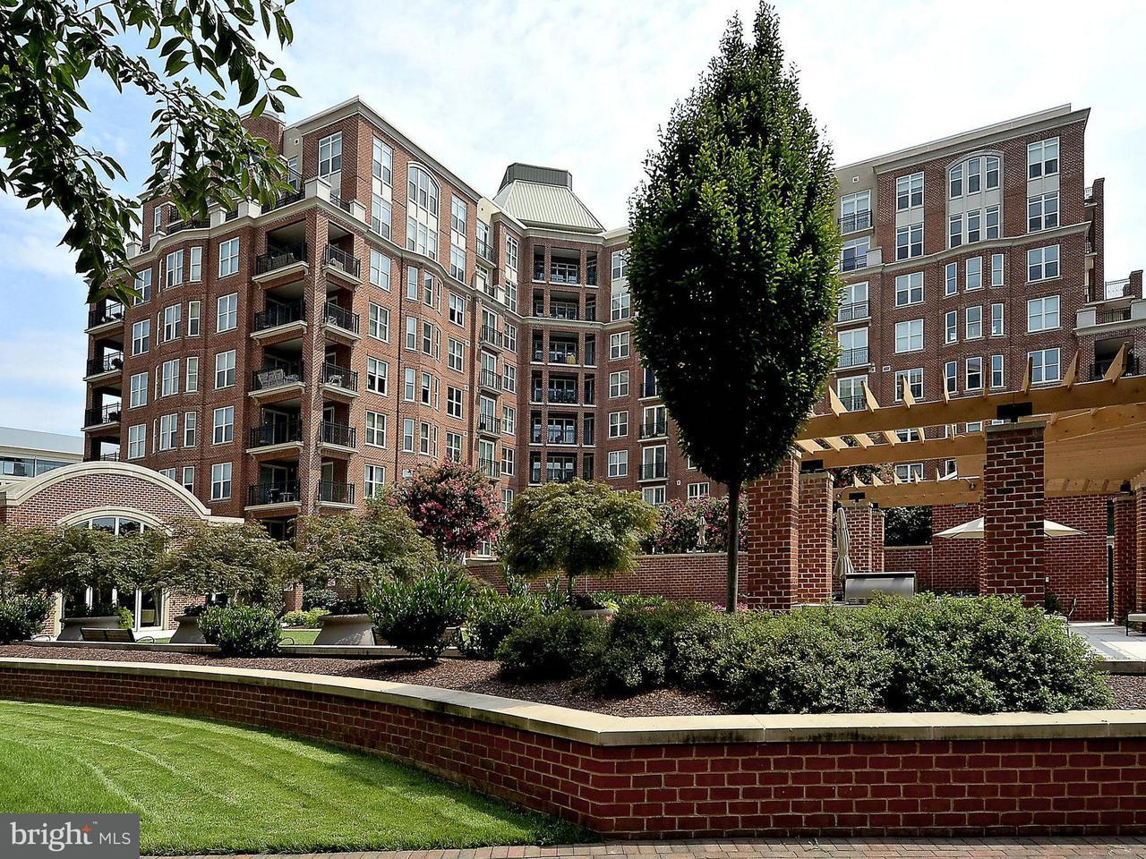 Appartement voor Verkoop een t 12500 Park Potomac Ave #106s 12500 Park Potomac Ave #106s Potomac, Maryland 20854 Verenigde Staten