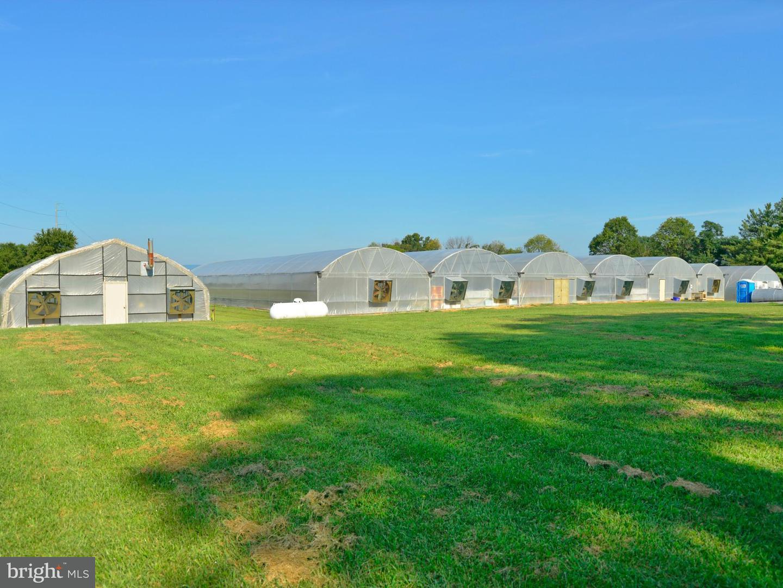 Land for Sale at 39501 Meadowlark Dr Hamilton, Virginia 20158 United States
