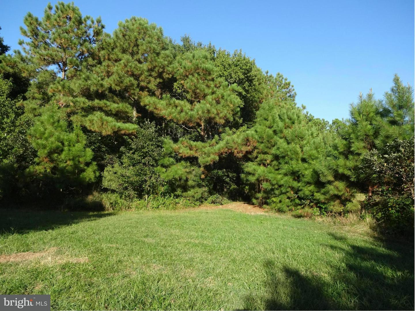 Additional photo for property listing at Ragged Point Rd  Cambridge, Maryland 21613 United States