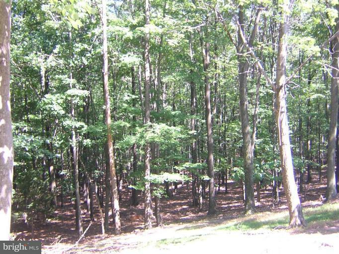 Land for Sale at 494 Cayuga Trail Hedgesville, West Virginia 25427 United States