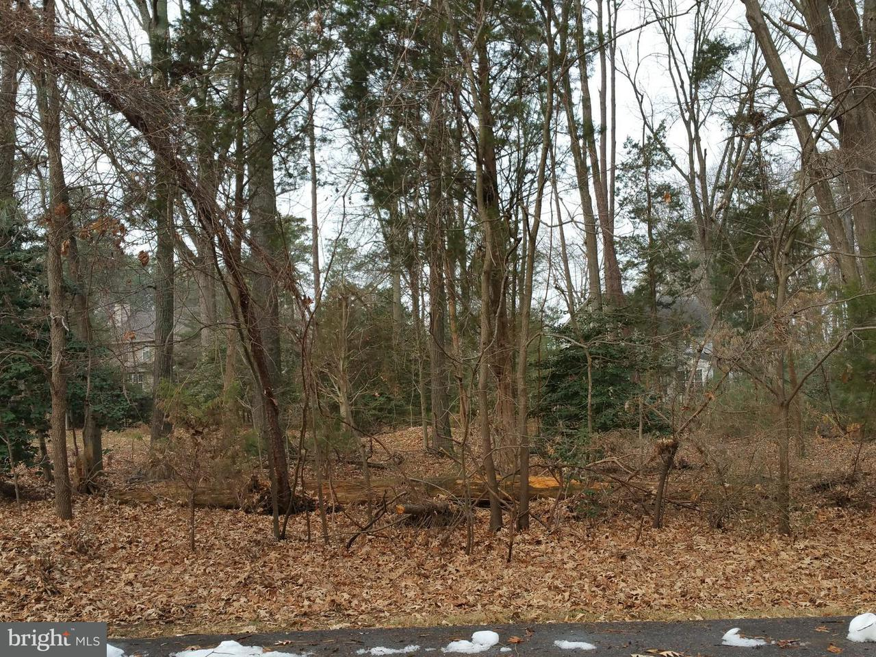 Land for Sale at 14525 Honeysuckle Way Issue, Maryland 20645 United States
