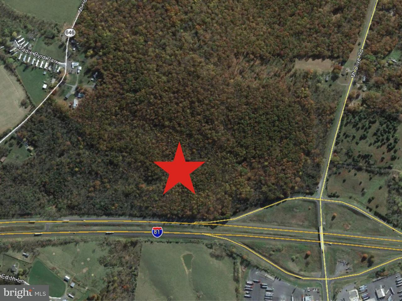 Commercial for Sale at 0 Mount Olive Rd Toms Brook, Virginia 22660 United States