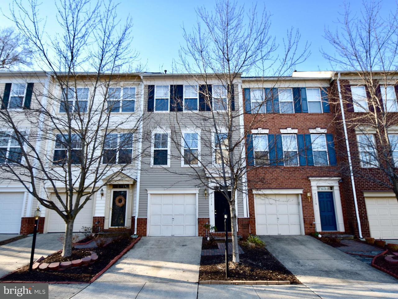 Other Residential for Rent at 43116 Huntsman Sq Broadlands, Virginia 20148 United States