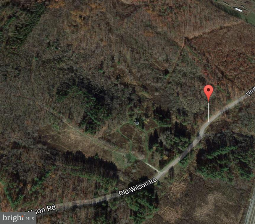 Land for Sale at Old Wilson Rd Swanton, Maryland 21561 United States
