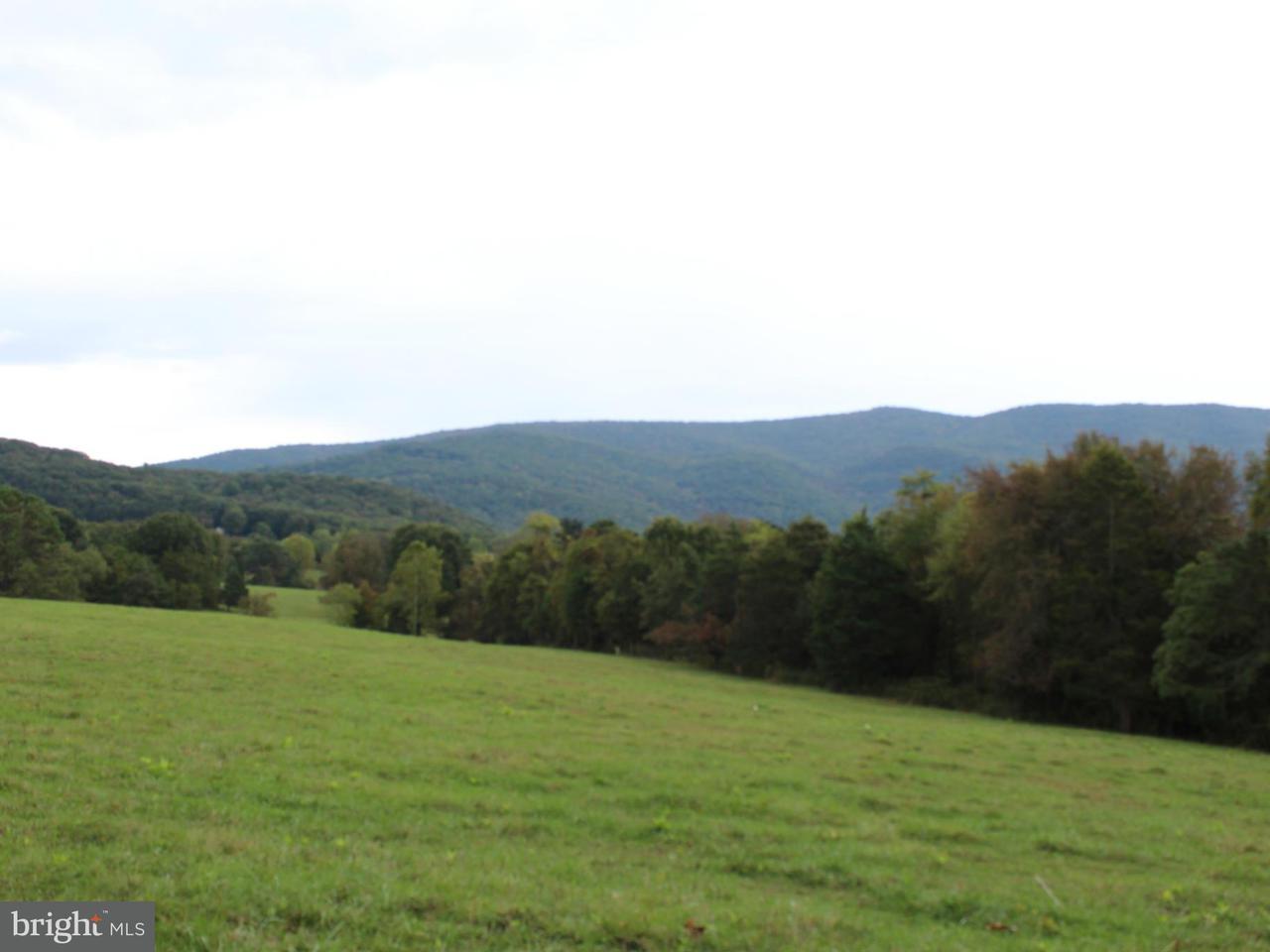 Terrain pour l Vente à Beahm Beahm Rileyville, Virginia 22650 États-Unis