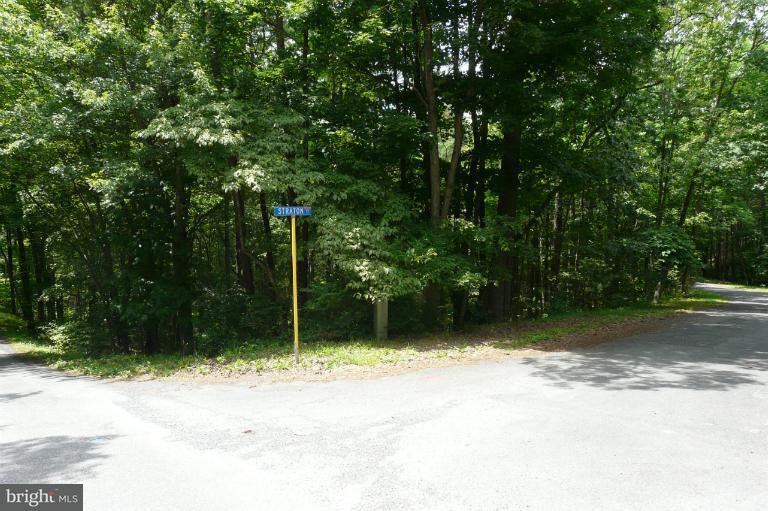 Additional photo for property listing at Straton Court  Basye, Virginia 22810 United States