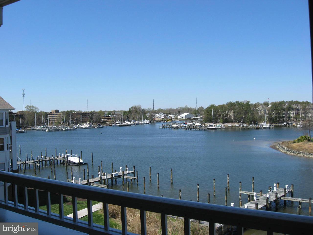 共管式独立产权公寓 为 销售 在 532 Oyster Bay Pl #403 532 Oyster Bay Pl #403 Dowell, 马里兰州 20629 美国