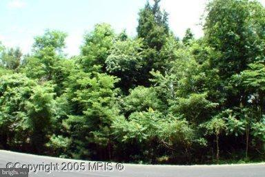 Land for Sale at 11577 Wollaston Cir Issue, Maryland 20645 United States