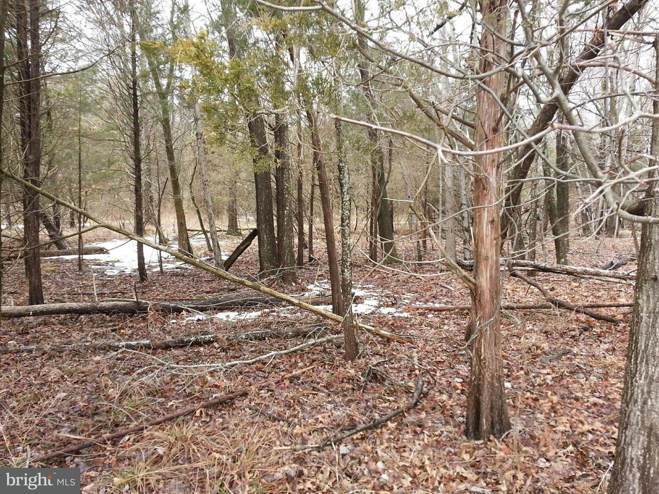 Земля для того Продажа на Pleasant Valley Road Pleasant Valley Road Chantilly, Виргиния 20151 Соединенные Штаты