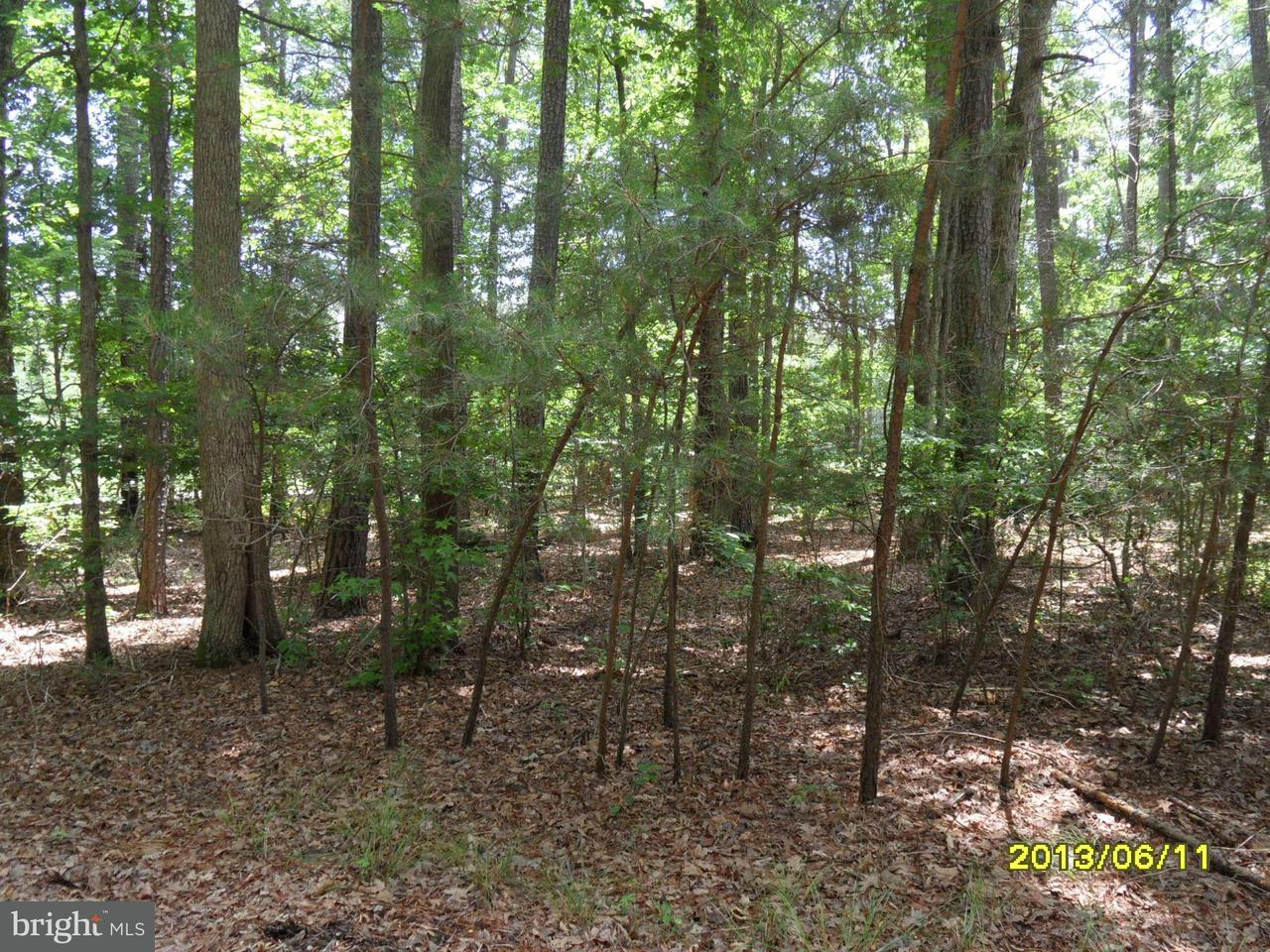 Additional photo for property listing at 15127 Beacon Hill Cir  Swan Point, Maryland 20645 United States