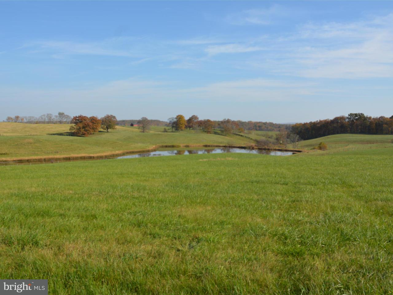 Land for Sale at Parcel B Rokeby Rd Upperville, Virginia 20184 United States