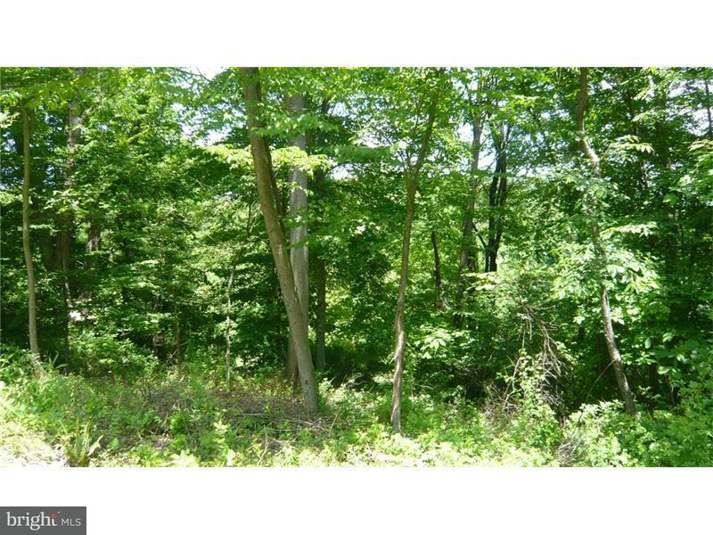 Land for Sale at Nemacolin Dr Ohiopyle, Pennsylvania 15470 United States