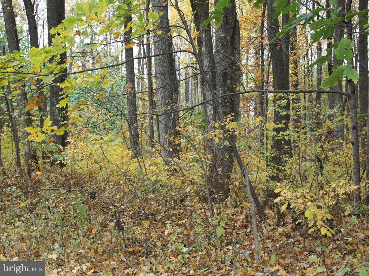 Land for Sale at 0 Highland Way Chester Gap, Virginia 22623 United States