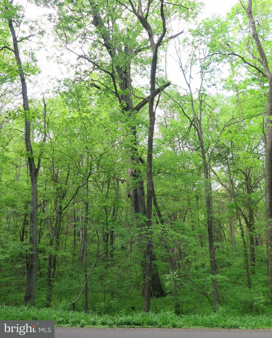 Land for Sale at Clarks Mountain Rd Rapidan, Virginia 22733 United States