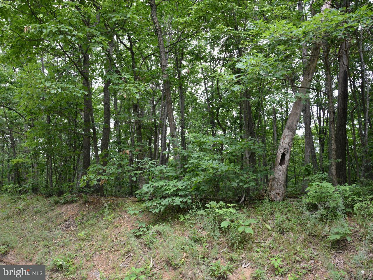 Additional photo for property listing at Polish Mountain Road #1  Clearville, Pennsylvania 15535 United States