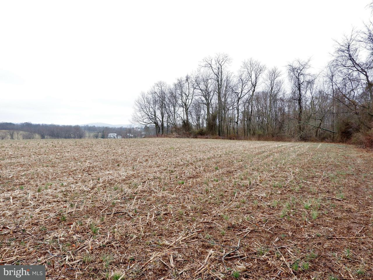 Additional photo for property listing at Not On File  Lovettsville, Virginia 20180 United States